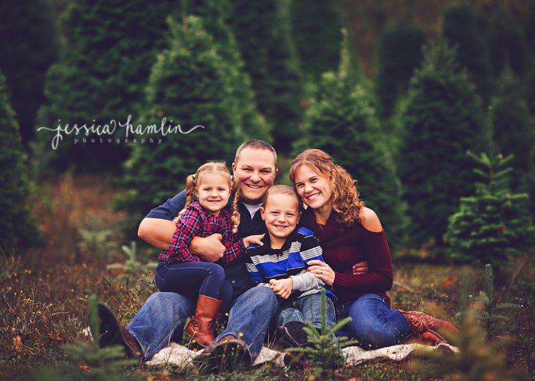 tree farm mini sessions seattle